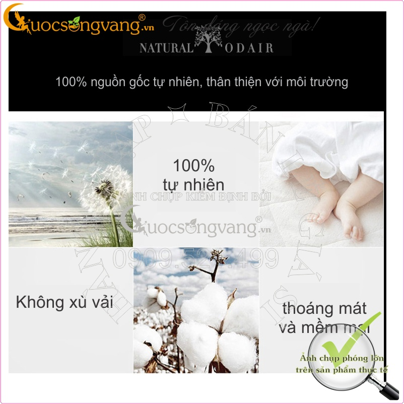 //cdn.cuocsongvang.vn/cdn/store/11055/psCT/20160804/3181187/Ao_thun_nam_co_tim_in_chu_co_GLA039_cotton_co_gian_(ao_thun_nam_co_tim_in_chu_co_gla039_(19)).jpg